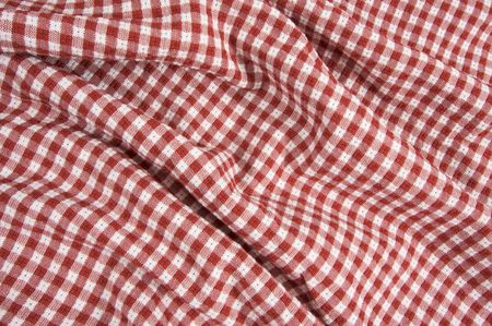Red and White Checkered Picnic Blanket Detail Stock Photo - 3475193