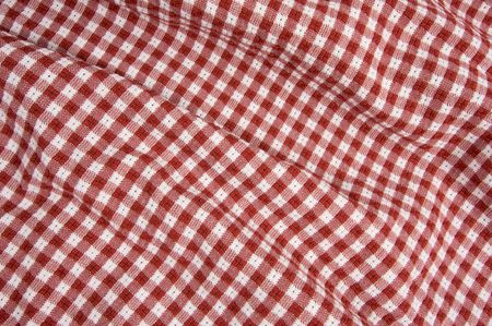 Red and White Checkered Picnic Blanket Detail Stock Photo - 3475195
