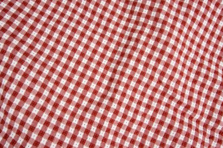 white blanket: Red and White Checkered Picnic Blanket Detail