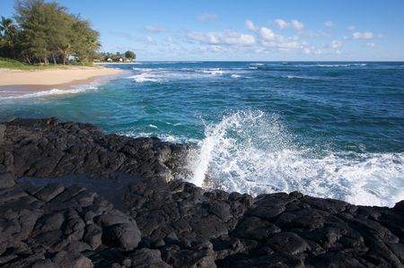 Tropical Shoreline on Kauai, Hawaii photo
