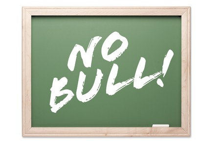 no integrity: Chalkboard Series Isolated on a White Background - No Bull! Stock Photo