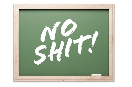 no integrity: Chalkboard Series Isolated on a White Background - No Shit! Stock Photo