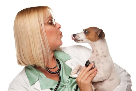 Attractive Female Doctor Veterinarian with Small Puppy Isolated on a White Background. photo