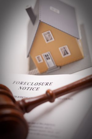 owned: Foreclosure Notice, Gavel and Model Home with Selective Focus.
