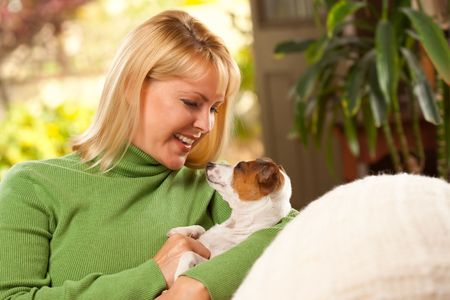 Woman and Jack Russell Terrier Puppy Enjoying a Day on The Sofa. photo