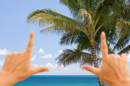 Hands Framing Palm Trees and Inviting Tropical Waters. photo