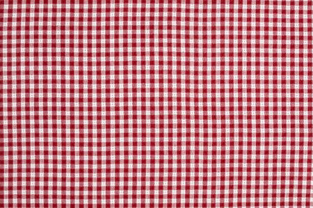 Red and White Checkered Picnic Blanket Tablecloth Detail Banco de Imagens - 7652506
