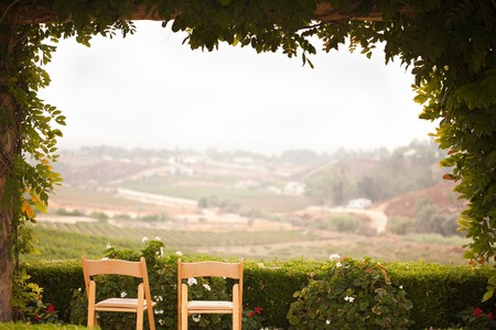 Vine Covered Patio and Chairs with Beautiful Country View. Banco de Imagens