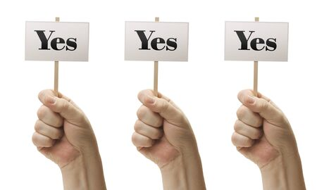 vote: Three Signs In Male Fists Saying Yes, Yes and Yes Isolated on a White Background. Stock Photo