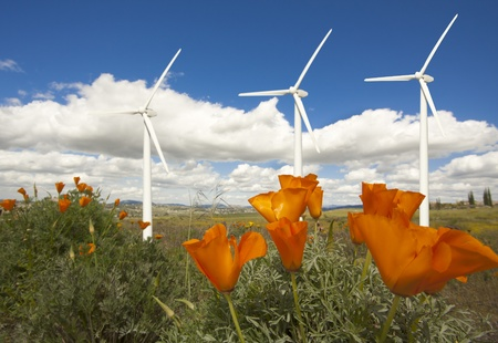 Wind Turbines Against Dramatic Sky, Clouds and California Poppies in the Foreground. photo