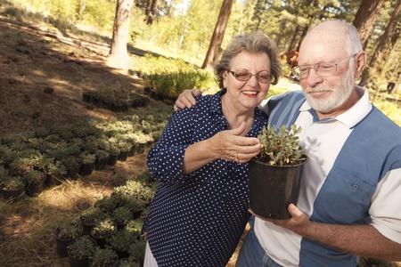 Attractive Senior Couple Overlooking Potted Plants at the Nursery. 版權商用圖片