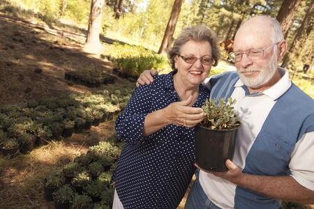 mature old generation: Attractive Senior Couple Overlooking Potted Plants at the Nursery. Stock Photo
