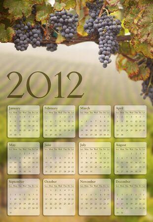 Beautiful Lush Grape Vineyard In The Morning Mist and Sun Stock Photo - 10594972
