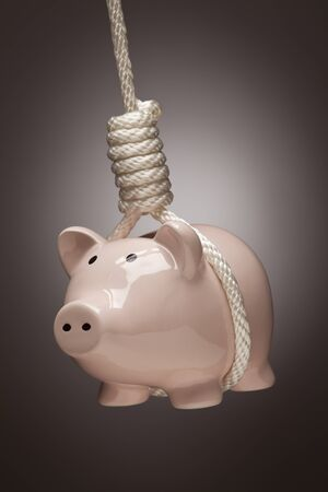 spot: Piggy Bank Hanging in Hangmans Noose on Spot Lit Background.