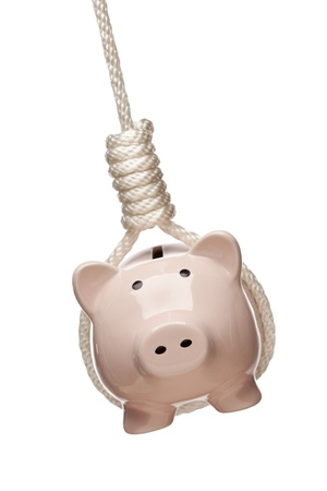 Piggy Bank Hanging in Hangmans Noose Isolated on a White Background. photo