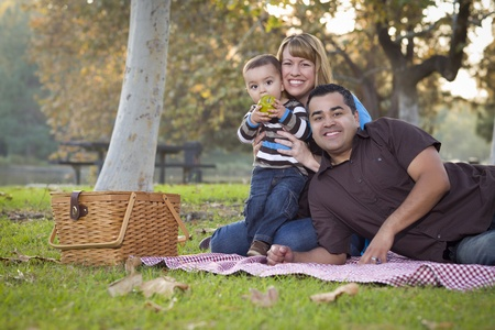 Happy Young Mixed Race Ethnic Family Having a Picnic and Playing In The Park. photo