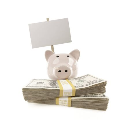 Pink Piggy Bank with Stacks of Hundreds of Dollars and Blank Sign Isolated on a White Background. photo