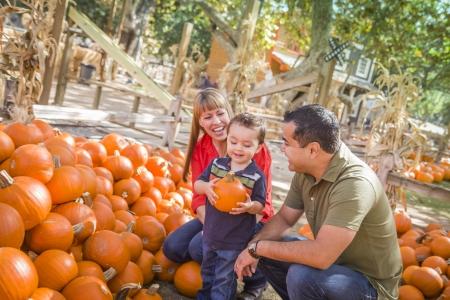 nios hispanos: Happy Family descendencia mixta Picking Pumpkins en el Pumpkin Patch.