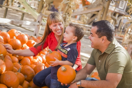 patches: Happy Mixed Race Family Picking Pumpkins at the Pumpkin Patch.