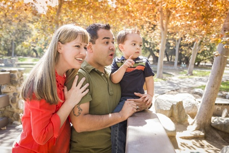 Happy Mixed Race Family Enjoy a Day at The Park Together. Stock Photo - 15720739