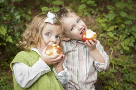 pals: Adorable Brother and Sister Children Eating Big Red Apples Outside.