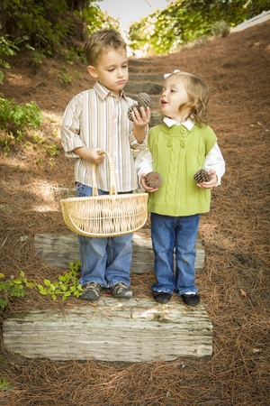Adorable Brother and Sister Children with Basket Collecting Pine Cones Outside.