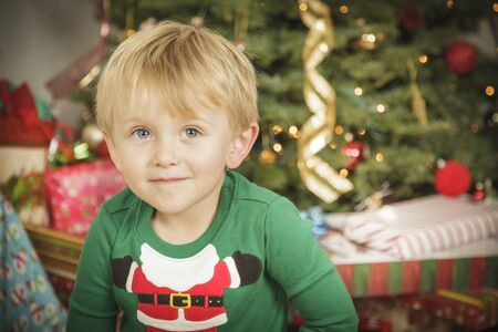Cute Young Boy Enjoying Christmas Morning Near The Tree. Stock Photo - 16825710