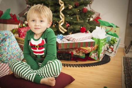 Cute Young Boy Enjoying Christmas Morning Near The Tree. Stock Photo - 16829985
