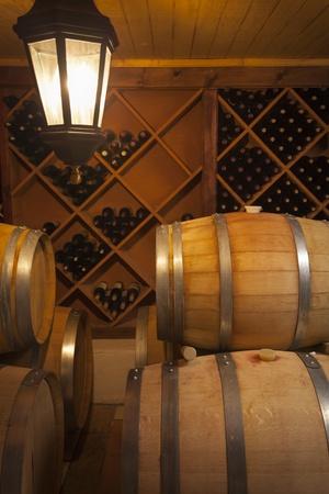 dimly: Wine Barrels and Bottles in Dimly Lit Cellar.