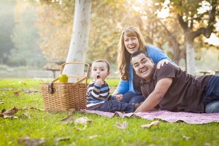 Happy Young Mixed Race Ethnic Family Having a Picnic and Playing In The Park. Stock Photo