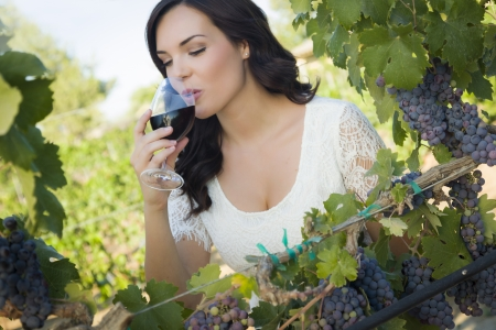 wine tasting: Pretty Mixed Race Young Adult Woman Enjoying A Glass of Wine in the Vineyard.