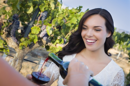 Vrij Mixed Race Jong volwassen vrouw genieten van een glas wijn in de wijngaard met vrienden. Stockfoto