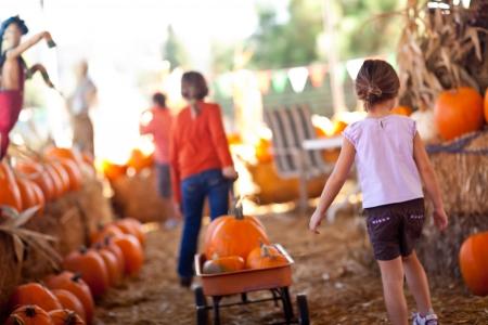 귀여운 작은 소녀의 날 호박 패치 하나는 가을에 마차에서 자신의 호박 이겠지.