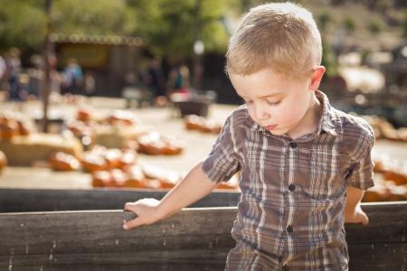 old wood farm wagon: Adorable Sad Little Boy at Pumpkin Patch Farm Standing Against Old Wood Wagon.