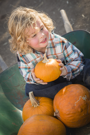 wheel barrel: Adorable Little Boy Sitting in Wheelbarrow and Holding His Pumpkin in a Rustic Ranch Setting at the Pumpkin Patch  Stock Photo