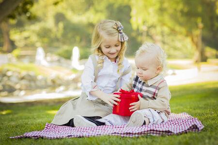 picnic blanket: Ni�a dulce da su hermano del beb� Un Regalo envuelto en una manta de picnic al aire libre en el parque. Foto de archivo