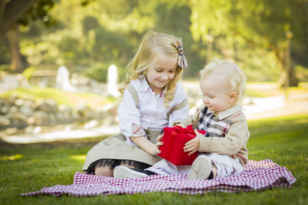 Sweet Little Girl Gives Her Baby Brother A Wrapped Gift on a Picnic Blanket Outdoors at the Park.  photo