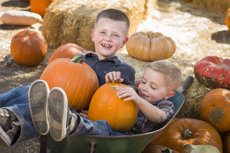 wheel barrel: Two Little Boys Playing in Wheelbarrow at the Pumpkin Patch in a Rustic Country Setting. Stock Photo