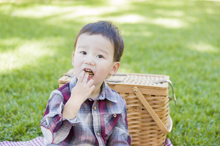 Cute Young Mixed Race Boy Sitting in Park Near Picnic Basket.