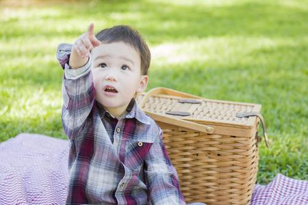 mixed race boy: Cute Young Mixed Race Boy Sitting in Park Near Picnic Basket.