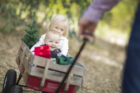Baby Brother and Sister Being Pulled in Wagon with Christmas Tree and Gifts Outdoors.