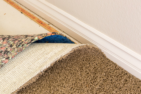 padding: Pulled Back Carpet and Padding In Room of House.