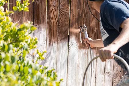 staining: Professional Painter Spraying House Yard Fence with Wood Stain.