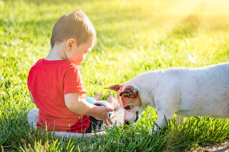 Cute Baby Boy Sitting In Grass Playing With Dog.