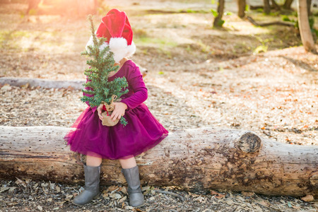 Cute Mixed Race Young Baby Girl Having Fun With Santa Hat and Christmas Tree Outdoors On Log.