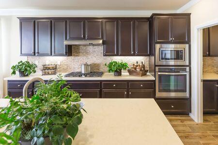 Beautiful Kitchen Interior with Dark Cabinets. 스톡 콘텐츠 - 138473815
