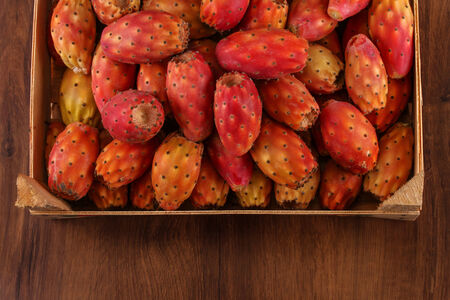 prickly pear: Prickly Pear or Nopal Many