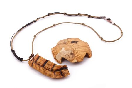 turtles love: The turtle necklace on the white background