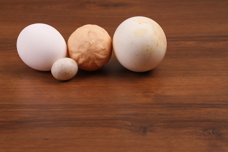 multiple image: The Domestic eggs Goose and dove egg Stock Photo