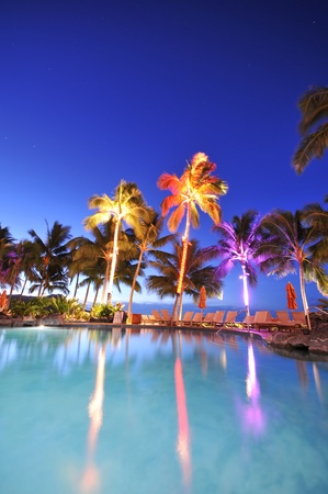 Palm trees reflect in a swimming pool at night time. Stock Photo